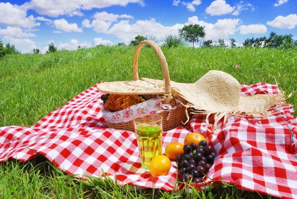 dia-de-la-madre-picnic