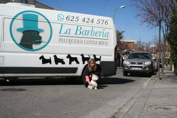 veterinario-en-el-encinar-de-los-reyes-barberia-canina