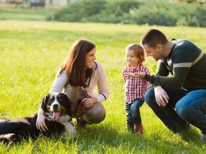 Vivir en familia, Blog El Encinar