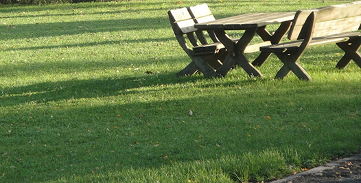 Lugares para hacer un picnic ce3rca de la urbanización El Encinar, Blog El Encinar