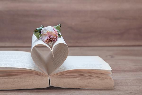 Historia de San Valentín, Grupo Inmobiliario El Encinar
