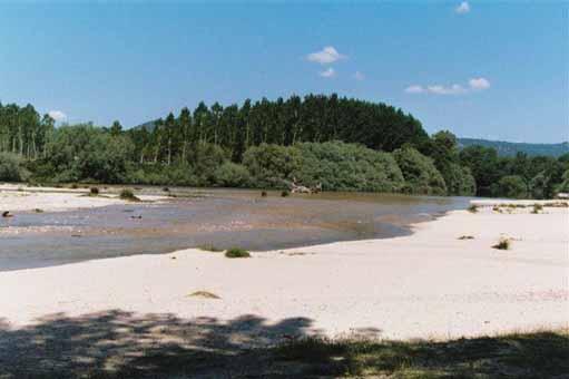 Playas de Madrid Río Alberche